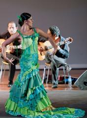 La Bronce es una de las grandes del flamenco en Venezuela FOTO: CORTESÍA